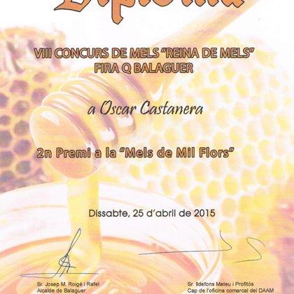 """2º Premio 2015 miel de mil flores. VII Concurso de mieles """"Reina de Mels"""""""