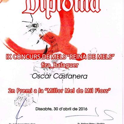 """2º Premio 2016 miel de mil flores. IX Concurso de mieles """"Reina de Mels"""""""